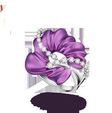 anillo oro purpura